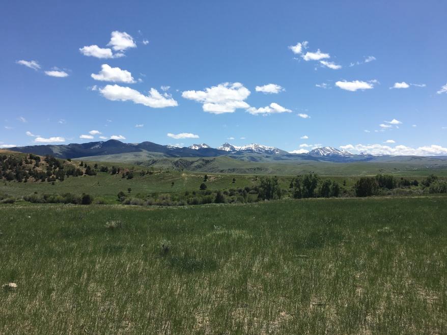 Snowcrest Ranch, Turner Enterprises